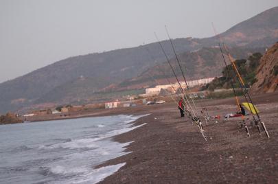 الصيد لدى الجزائريين.. هواية وولع وهوس