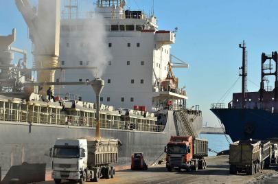 روسيا تزيد صادرات القمح إلى الجزائر