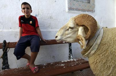 كورونا وإجراءات التباعد.. هل يتخلّى الجزائريون عن عاداتهم في عيد الأضحى؟