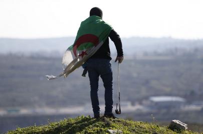 لقاء فلسطين والجزائر.. المستطيل الأخضر للمقاومين
