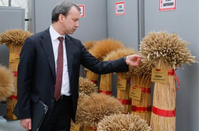 القمح الروسي بدل الفرنسي.. توجّه إلى تبعية أخرى؟