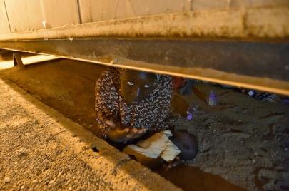 الحكومة تعلن عن إجراءات جديدة لمحاربة ظاهرة التسول بالأطفال الأفارقة